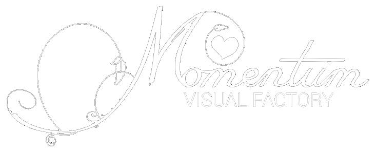 Momentum VisualFactory
